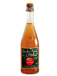 Sparkling Apple Juice
